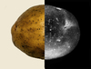Asteroid potatoes