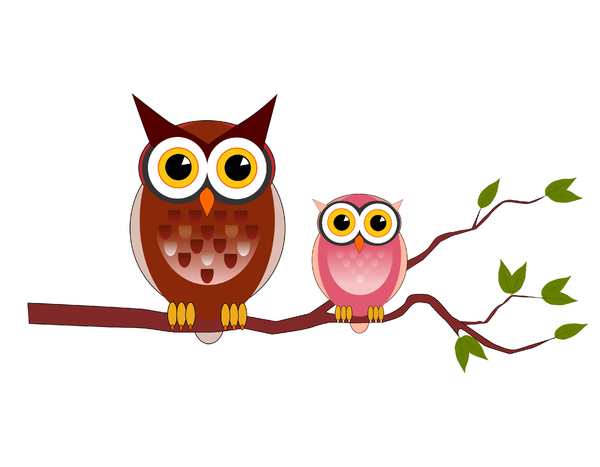 Owls: Illustration made whit Inkscape ( the free  vector software )