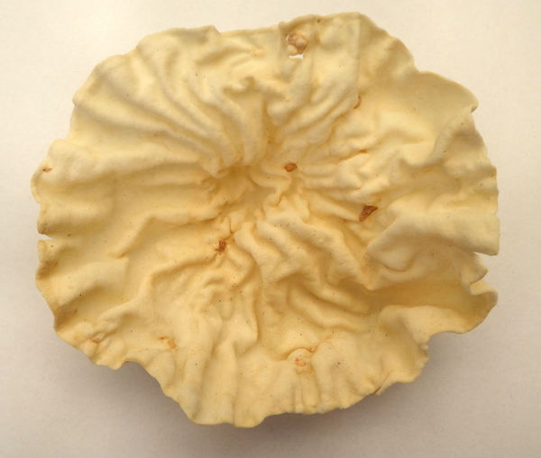 plain papadum textures2.: creases and miniature crevasses in concave microwave cooked papadum