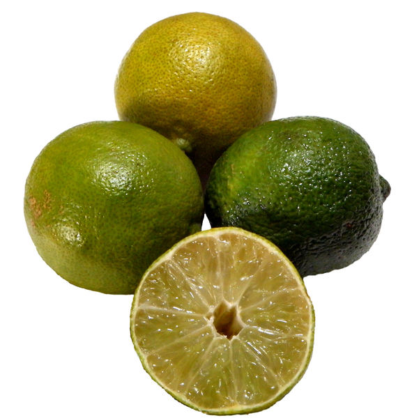 fresh limes b1: several fresh limes ready for use in cooking and drinks