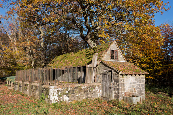 Old woodland cottage: An old cottage with animal pens in woodland in West Sussex, England, in autumn.