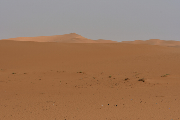 Desert Landscape: Desert Sand and small rocks are found in the large desert areas in Saudi Arabia and this red sands are found usually outside the main capital of Riyadh. No life seen, just sand and sky.