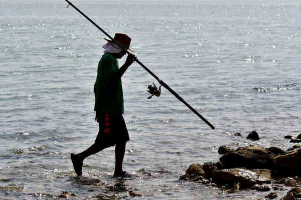 fishing with a rod from rocks: Fisherman with his fishing rod is catching fresh fish from the rocks on the beach.