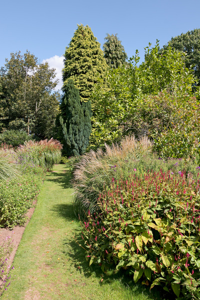 Garden path: A path in a garden in Kent, England, in early autumn.