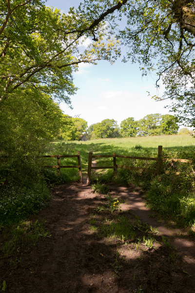 Field entrance and footpath: Footpath at the entrance to a field in Hampshire, England, in spring.
