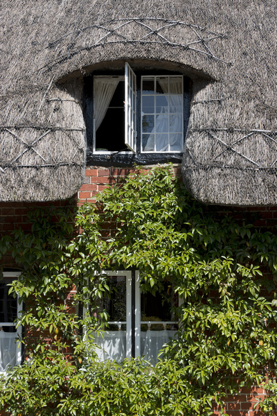 Cottage windows: Windows of an old thatched cottage in Hampshire, England.
