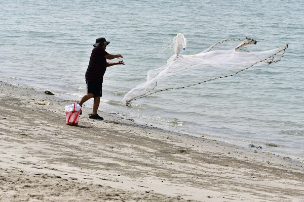 Fishing on the beach: Fishing photos of a fisherman catching fish using his fishing net