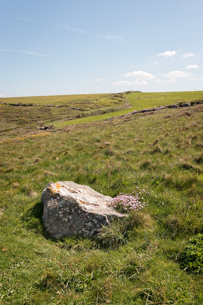 Lone boulder: A lone boulder on a clifftop on the coast of Cornwall, England.