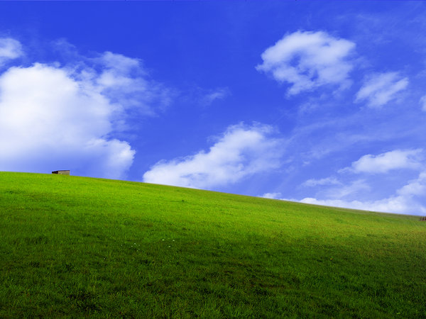 landscape: Windows desktop look alike landscape.