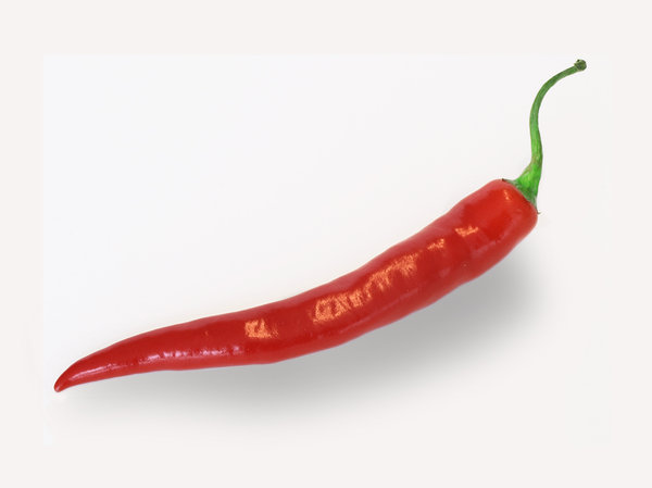 chili: red hot chili pepper