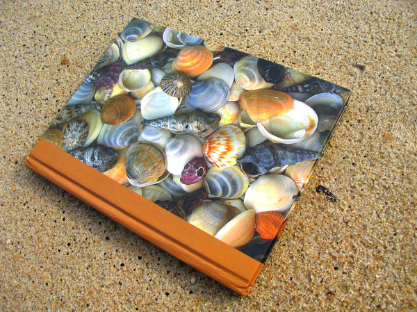 book cover with shells: the shells are on the book ;)