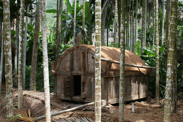 Jungle hut: A grain store amid palm trees in Hainan, China.