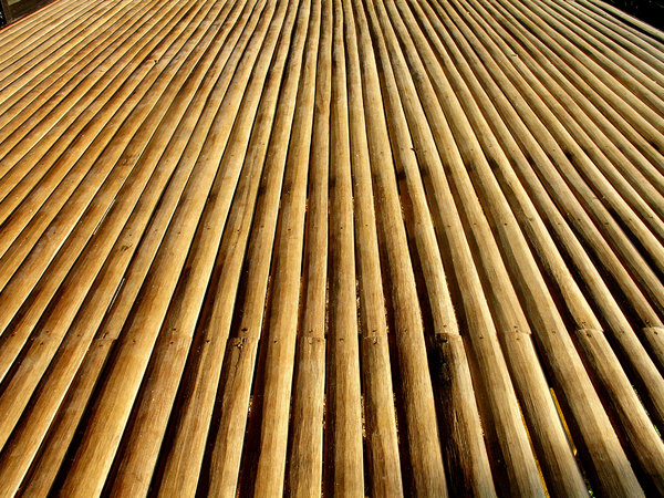 Bamboo Slats: Bamboo slats as flooring.