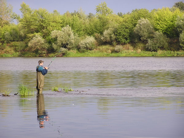An angler: An angler hunting for fish in the river Narew.Please mail me if you found it useful. Just to let me know!I would be extremely happy to see the final work even if you think it is nothing special! For me it is (and for my portfolio)!