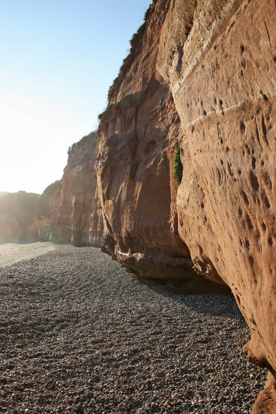 Red cliff face: A red sandstone cliff in Devon, England.
