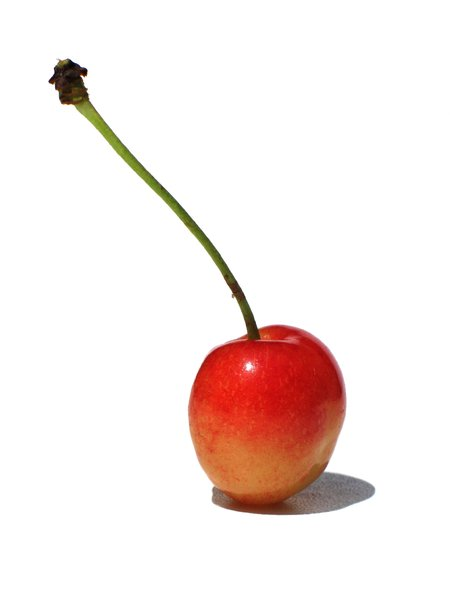first cherry 1: none