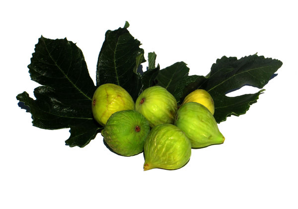 ripe figs 2: none