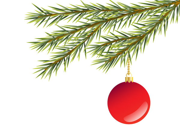 Bauble and Branch: Christmas tree decoration.  Glossy red bauble hanging from fir branch over white background.  Illustration.