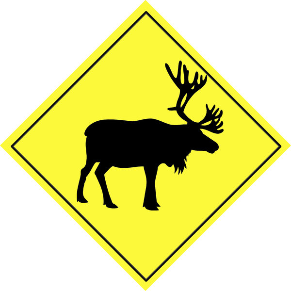 animal sign warning road safety beware street danger traffic drive yellow rgbstock february hisks