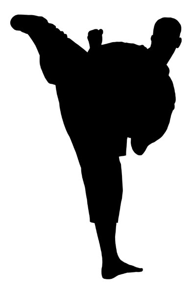 Karate 2: Silhouette of fighter