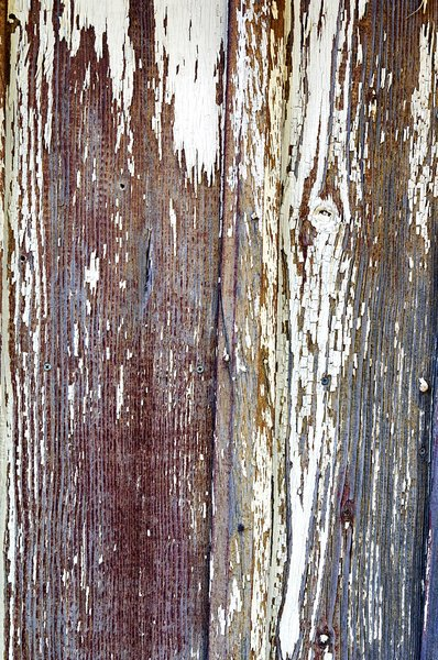 Weathered wood: Weathered wood on the side of a very old building.