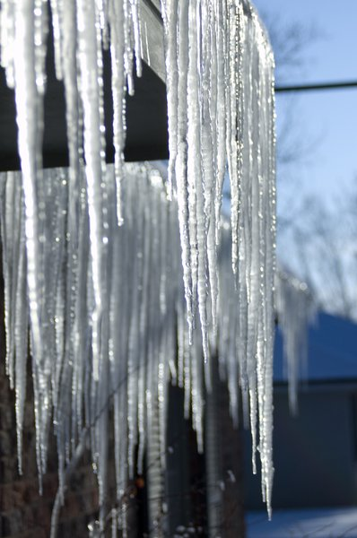 Ice: Icicles running off the roof of my neighbor's house.