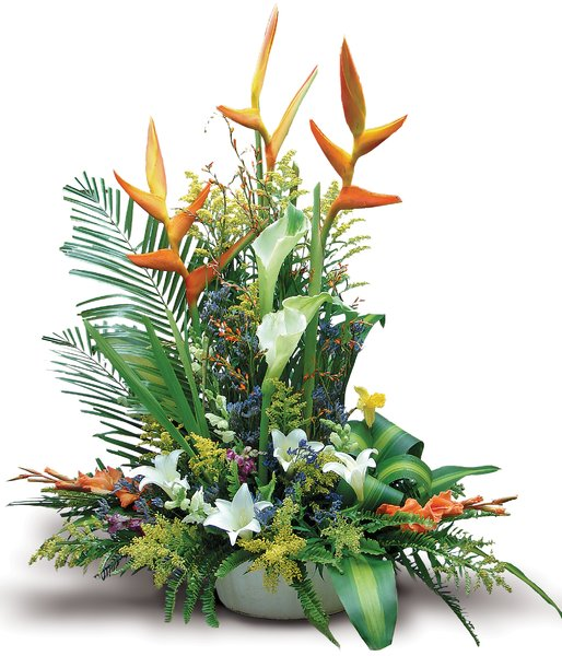 Aves del Paraiso: Complex flower arrangement featuring a very