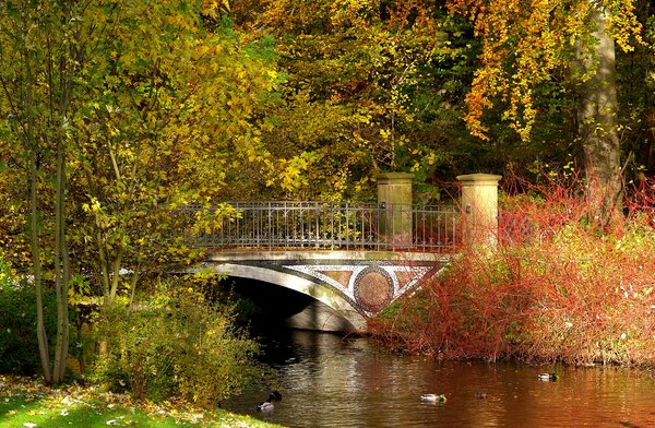 Autumn park'n bridge: No description