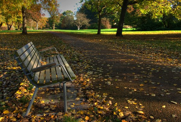 Fall in the park - HDR: The picture is HDR