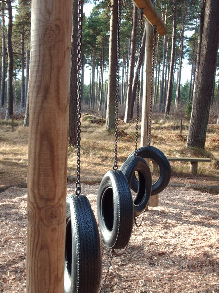 Forest Playpark: View of a playpark in a forest