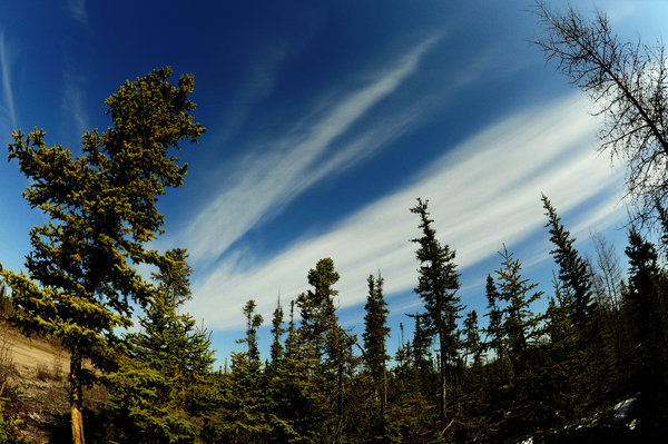 Yellowknife Scenic Shots 2: Taken in Northern Canada near Yellowknife