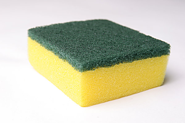 sponge: No description