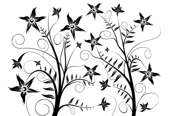 Night Flower 1: Black and white flower vector
