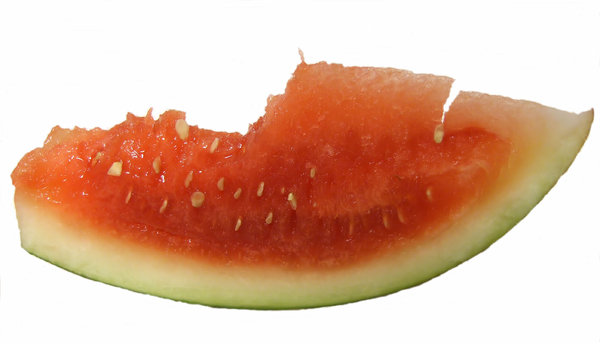 watermelon mouthful: partially eaten slice of watermelon