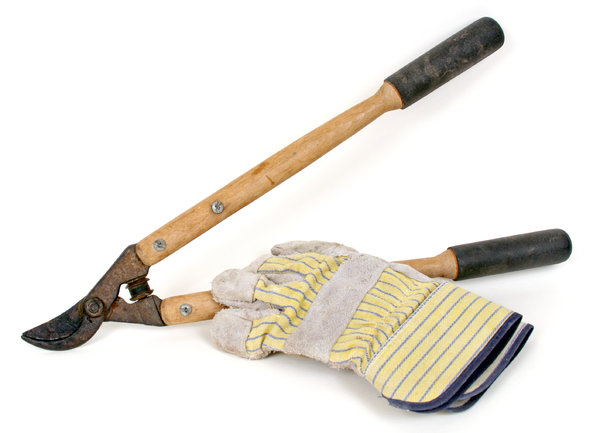 Pruners and Gloves: Various isolated objects on a white background.