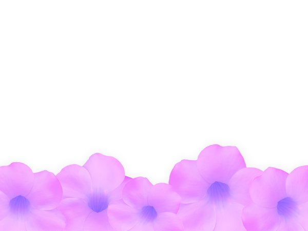 Floral Border 3: Floral border on blank page. Lots of copyspace.