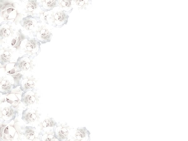 White Rose Border 1: