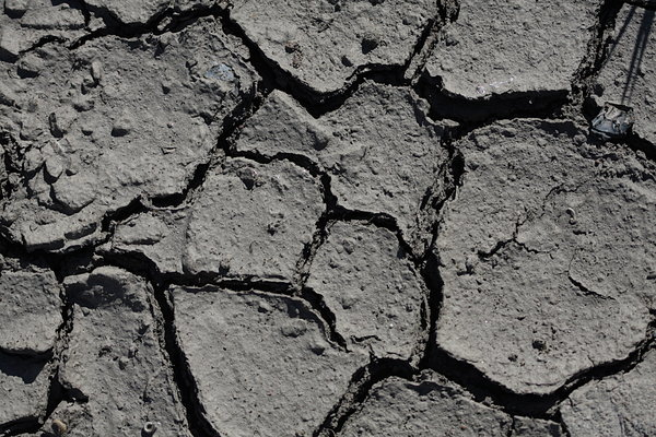 Parched earth: Parched earth