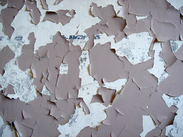 Peeling paint: Wall decay
