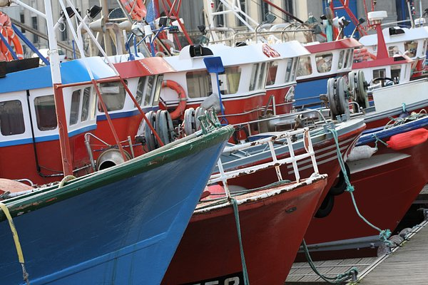 Fishing boats: Fishing boats in A Coru�a