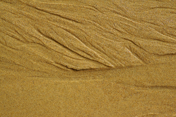 Beach Sand 2: These are marks that water makes in the sand as it is flowing back to the sea.