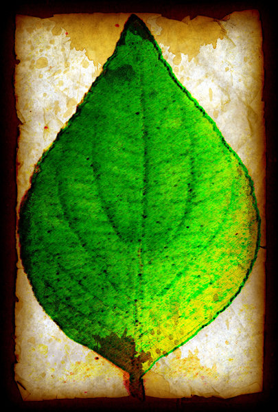 Stained Leaf: Grunge Leaf on Stained Paper.Please visit my stockxpert gallery:http://www.stockxpert.com ..