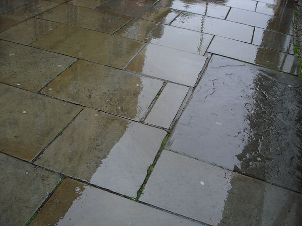 Wet Pavement 1: Images of reflections on wet pavement