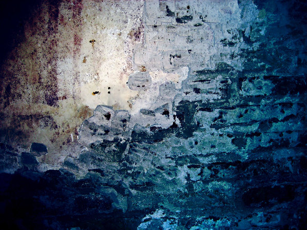 grungy wall texture: grungy wall texture