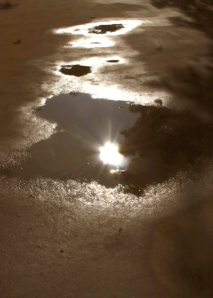 Puddles 2: Loved the way the edges of the puddles glitter in the sunlight