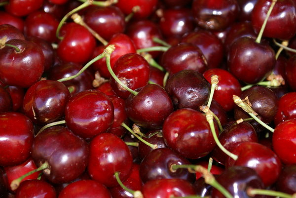 Close up on cherries: Close up on cherries