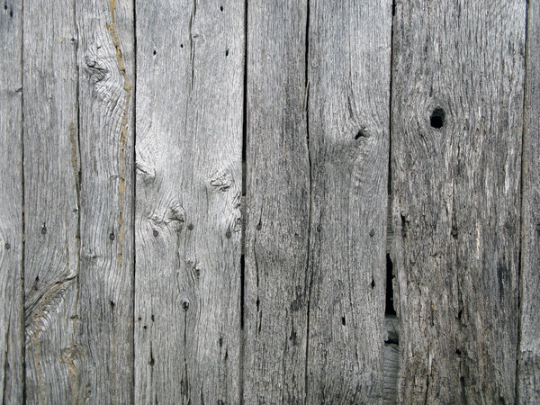 Weatherd Wood: Weathered wood.