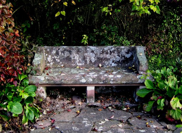 park bench in autumn: an old stone park bench in autumn