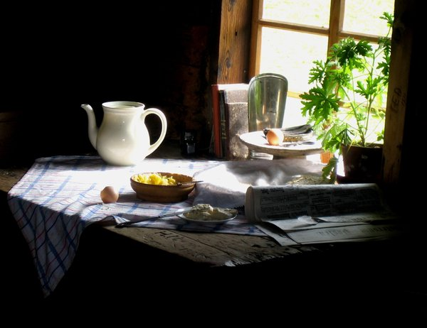 breakfast: Still life on a farm yard