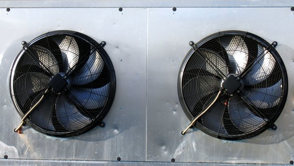 two fans: two fans